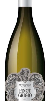 Pinot Grigio delle Venezie IGP |Antica Vigna